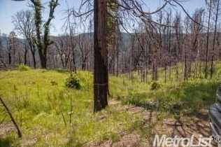 0 Elk Ranch Road - Photo 12