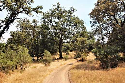 15108 Chisum Trail - Photo 1