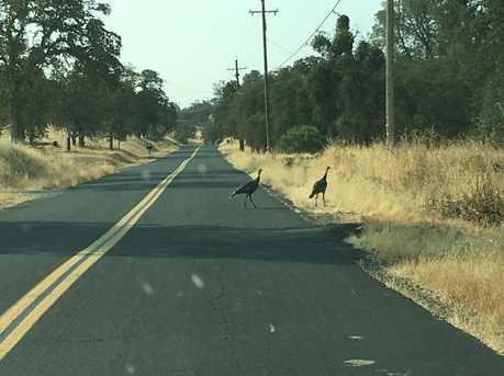 1311 Arbolada Drive - Photo 6