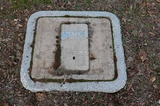 12990 Austin Forest Circle - Photo 8