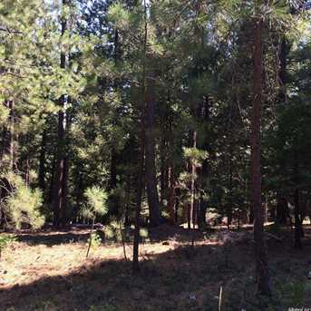 0 Lot 117 Grizzly Flat Rd - Photo 8