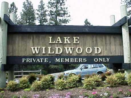 14380 Lake Wildwood Dr - Photo 1