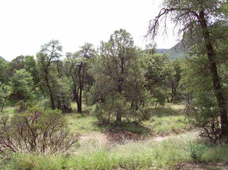Parcel B E Ramsey Canyon - Photo 6