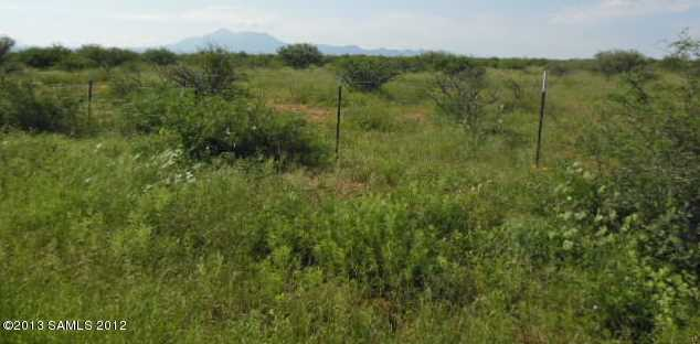 Lot A Sw Corner Of Palominas Herefor - Photo 4