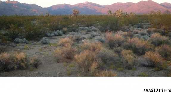 - Lot 29 Central Rd - Photo 6