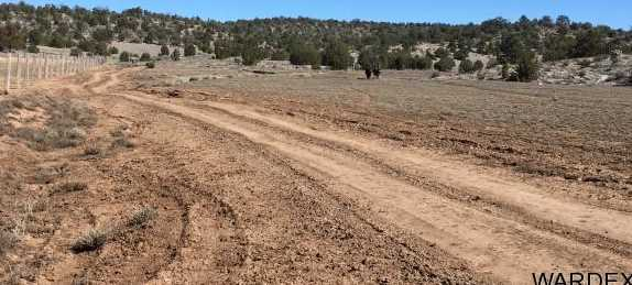 Lot 636 Lucky Dog Ranch - Photo 32