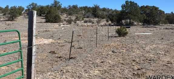 Lot 636 Lucky Dog Ranch - Photo 24