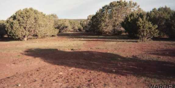 4 Lots High Mountain Road - Photo 2
