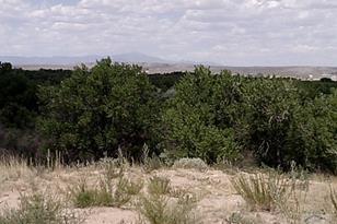 35345 Hidden Mesa Dr - Photo 1