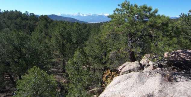 Tbd 7th Trail - Photo 12