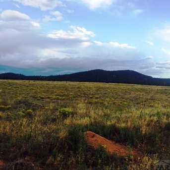1011 Blazing Saddle Trail - Photo 4