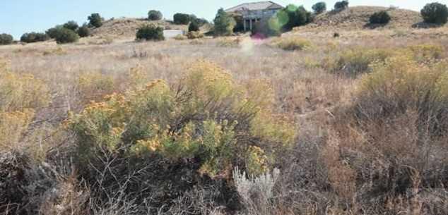 976 S Blue Hills Dr - Photo 1