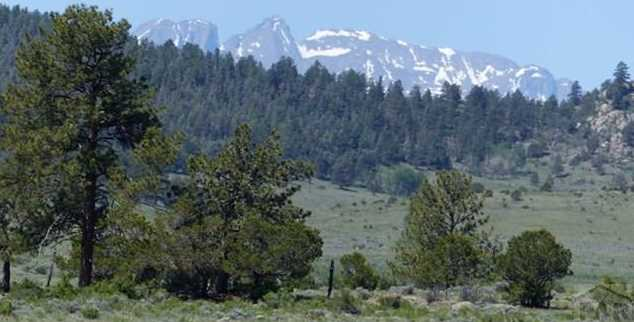 Tbd County Rd 265 - Photo 4