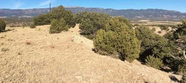 48&49 Colorado Land and Grazing - Photo 8
