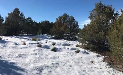 Lot 860 County Rd 504 - Photo 6