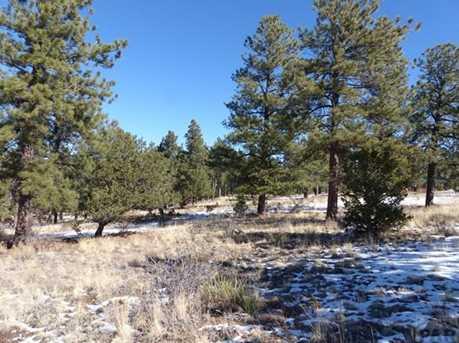 623 Wyandot Trail - Photo 6
