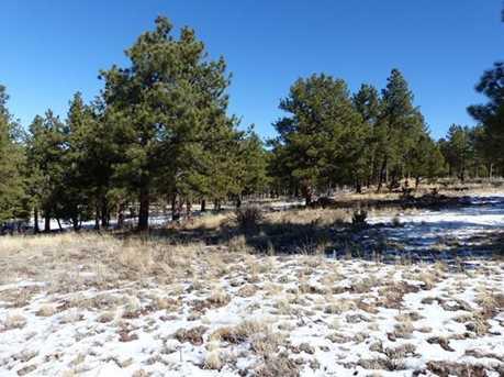623 Wyandot Trail - Photo 12