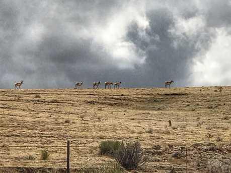 Lot # 50 Eagle Flat Ranch - Photo 10