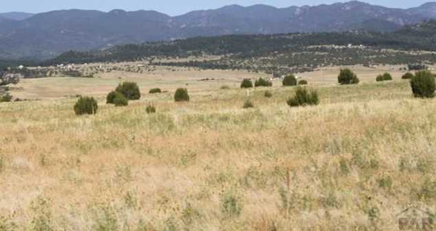 Lot 55 Twin Buttes - Photo 16