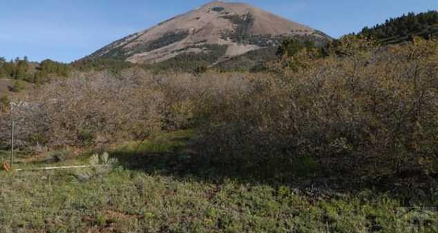 Lot 29 Tres Valles West - Photo 6