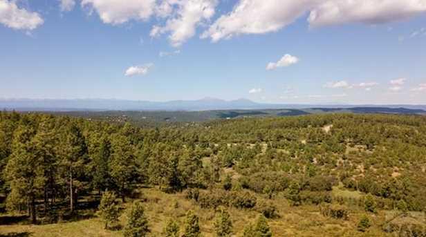 33029 Alpine Meadow - Photo 38