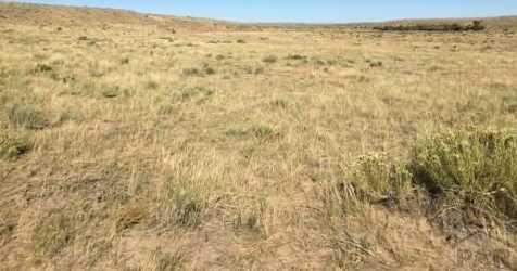 13 Eagle Flat Ranch - Photo 4