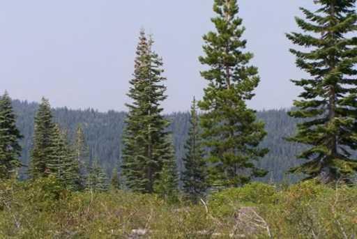 000 Squirrel Creek Road - Photo 6
