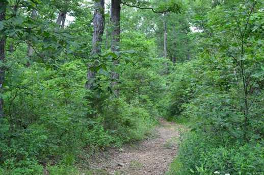 513 Wilderness - Photo 2