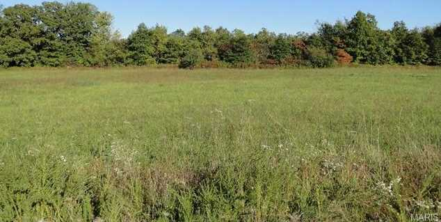 16850 Private Dr 2162 (Lot 18) - Photo 1