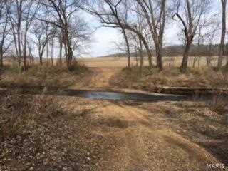 1403 Highway F   157+/- Acres - Photo 16