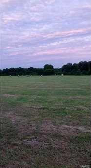17550 Elk Prairie Drive - Photo 1