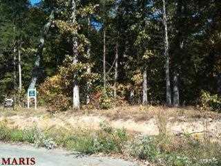 13462 Saddle Creek - Photo 4
