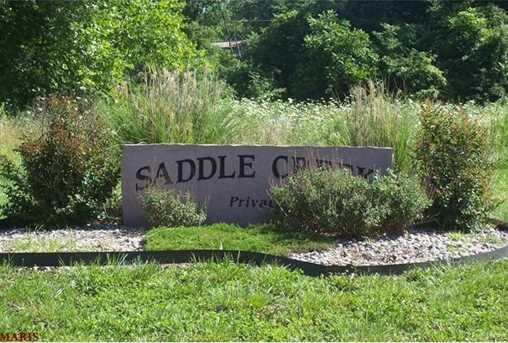 13462 Saddle Creek - Photo 2