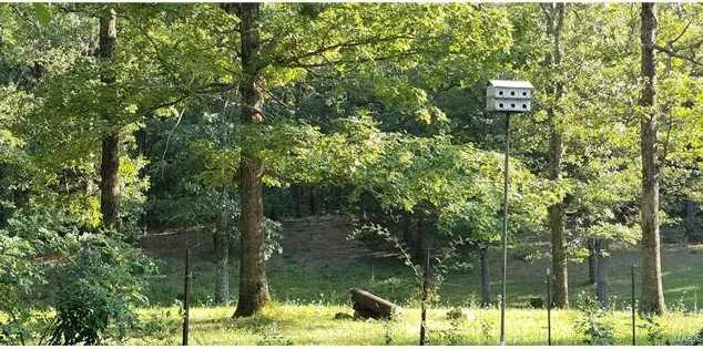 1768 County Road 6320 - Photo 58