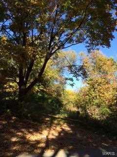 7 Bridle Ridge - Photo 2