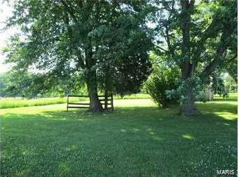 2151 County Road 167 - Photo 4