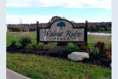48 (Lot) Walnut Ridge Place - Photo 1