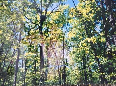 0 Buck Mountain Rd - Photo 10