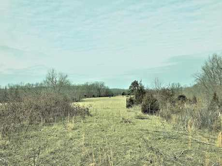 0 29544B State Highway C - Photo 8