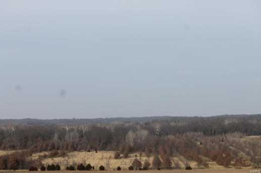 33799 Dilthey Rd - Photo 24