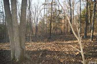 4077 Saddle Wood Rd - Photo 2
