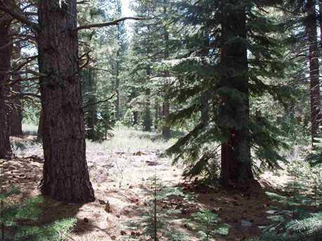 10470 Pine Cone Drive - Photo 10