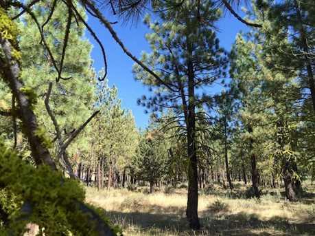 295 Deer Trail - Photo 2