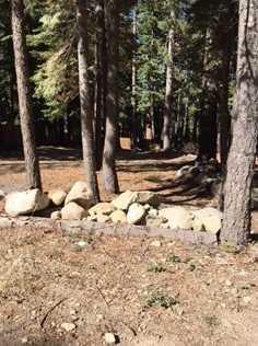 6925 West Lake Boulevard - Photo 2