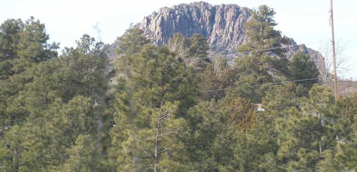 1275 Copper Canyon Drive - Photo 8