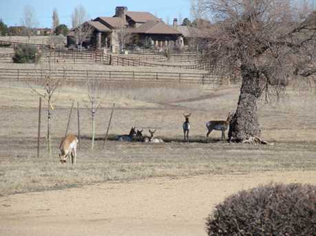 9285 American Ranch Road - Photo 36