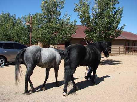 9285 American Ranch Road - Photo 34