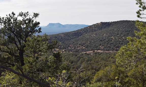 807 Sierra Verde Ranch - Photo 8