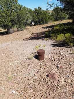 1401 Reata Trail - Photo 10
