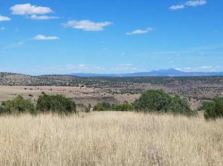 1401 Reata Trail - Photo 6